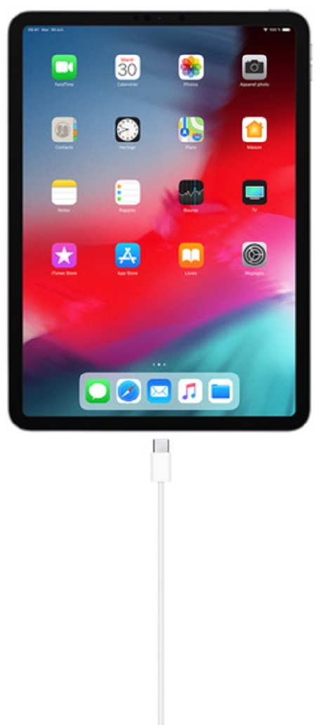 Câble de charge USBC (1m) Apple blanc