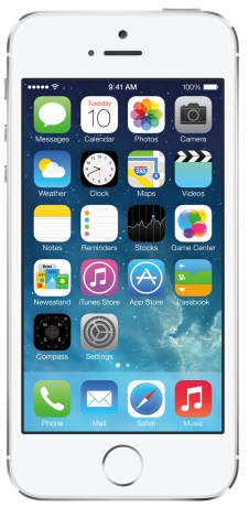 Apple iPhone 5S Argent 16Go